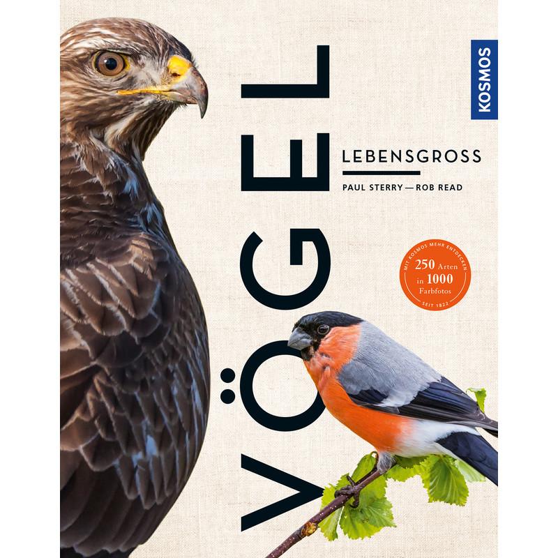 Kosmos Verlag Vögel lebensgroß 15907